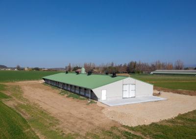 Bâtiment d'élevage pour 10 800 poulettes au sol, nouvelles normes BIO