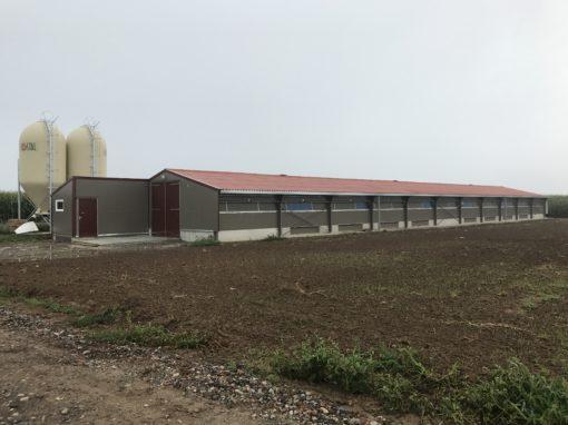 4 Bâtiments d'élevage traditionnel pour Poulets Label rouge