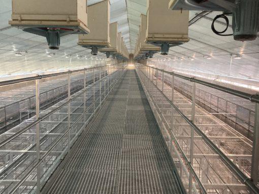 Bâtiment d'élevage pour 48 590 Poulettes – Allier