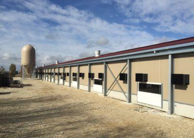 Bâtiment Coqs Futur reproducteurs et poules futur reproductrices