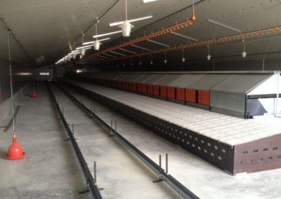 Bâtiment d'élevage pour 3 800 poules reproductrices- AIN